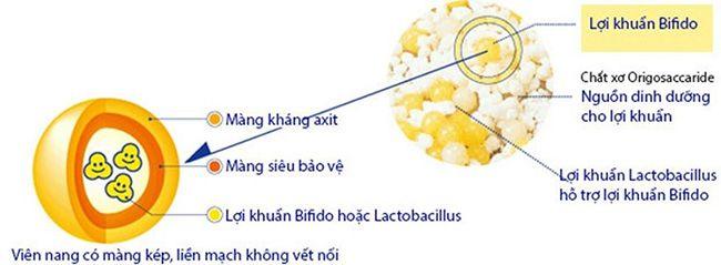 Men tiêu hóa Bifina S Trung cấp Hộp 30 gói